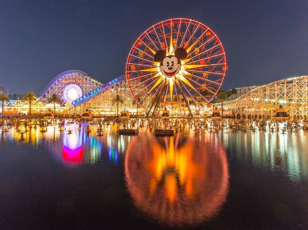 Puluhan Ribu Orang Teken Petisi Online Tolak Pembukaan Disneyland