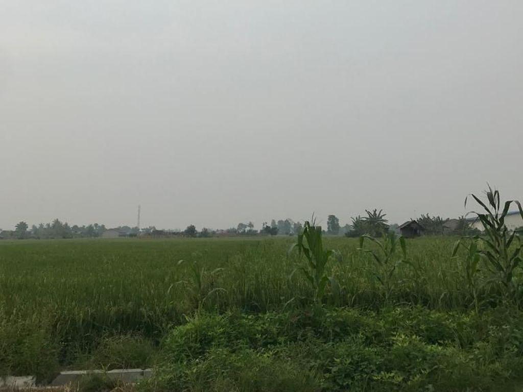 Karhulta Landa Sumsel-Riau, Kabut Asap Muncul di Deli Serdang