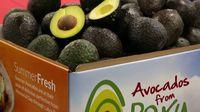 Wow! Guacamole Seberat 4 Ton Ini Pecahkan Rekor Dunia