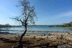 Tahu Nggak, Laut Mati Juga Ada di Indonesia Lho