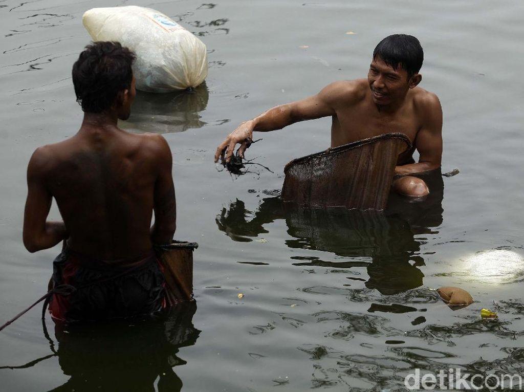 Mengais Rezeki dari Mahluk Kecil di Sungai Kotor Jakarta