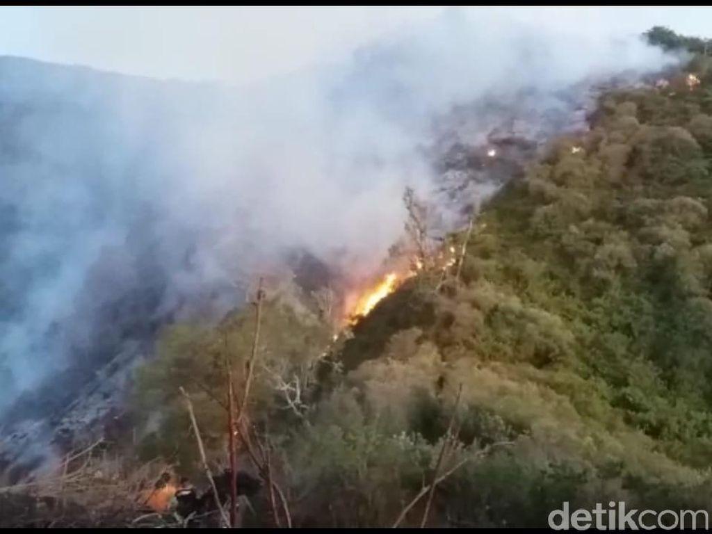 Hutan Lereng Gunung Slamet di Tegal dan Brebes Terbakar
