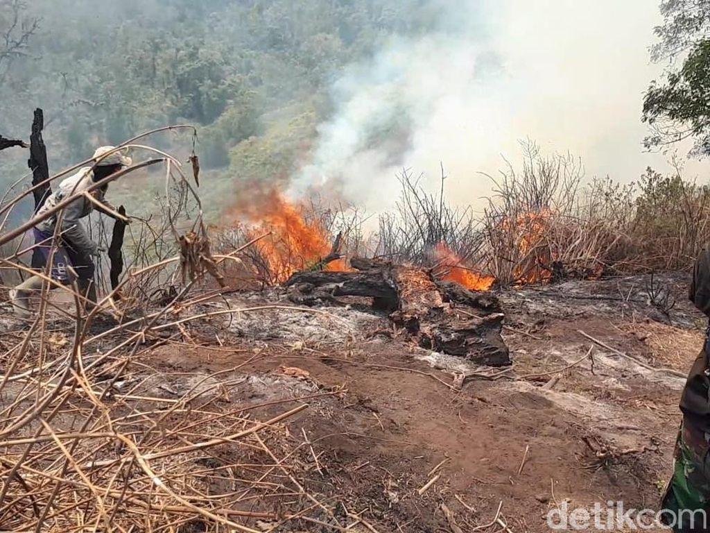 Kebakaran Gunung Slamet Belum Padam, Jumlah Relawan Pemadam Ditambah