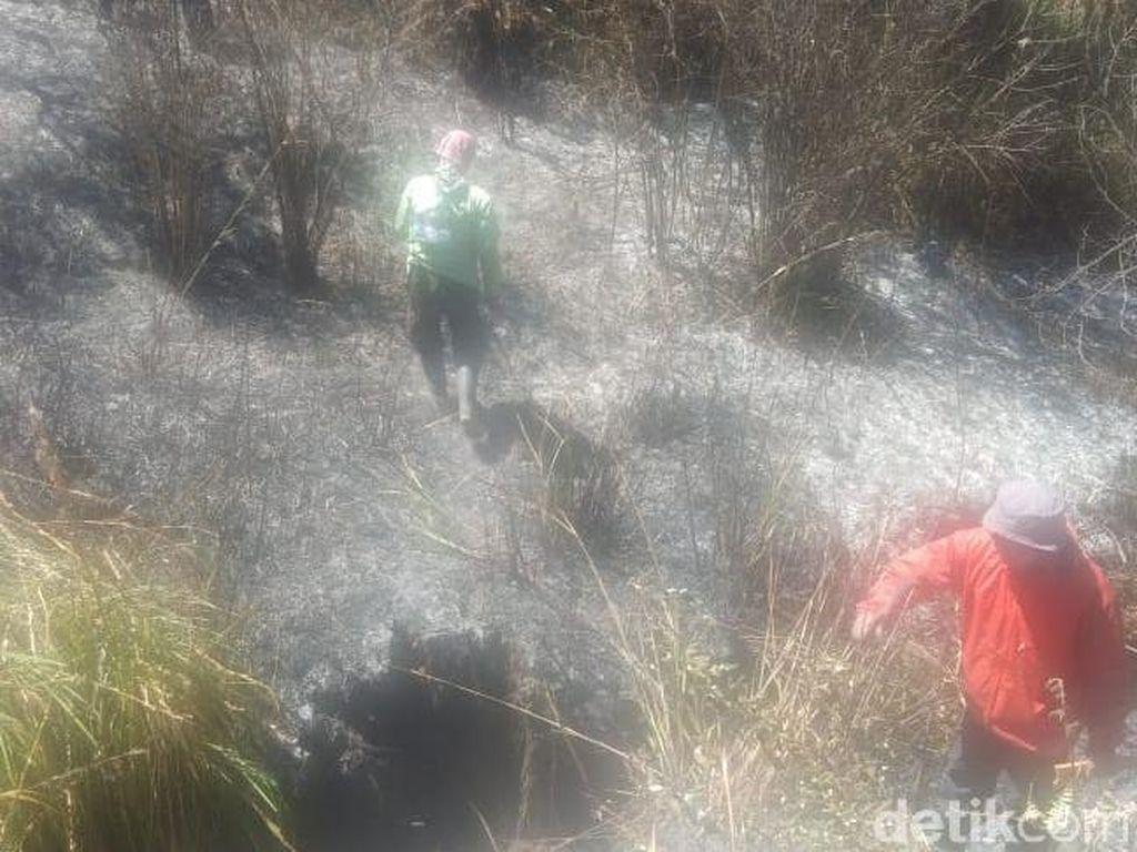 Jalur Pendakian Semeru Terbakar, TNBTS Keluarkan Imbauan Bagi Pendaki