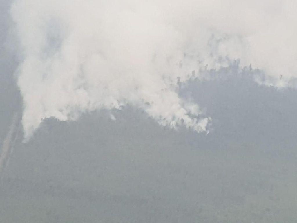 Penampakan Terkini Karhutla di Kalimantan dari Udara