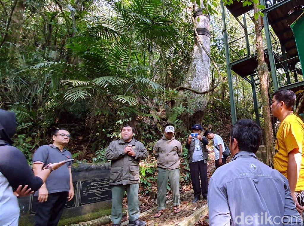 Ini Daftar 29 Wisata Alam di Indonesia yang Akan Dibuka Kembali