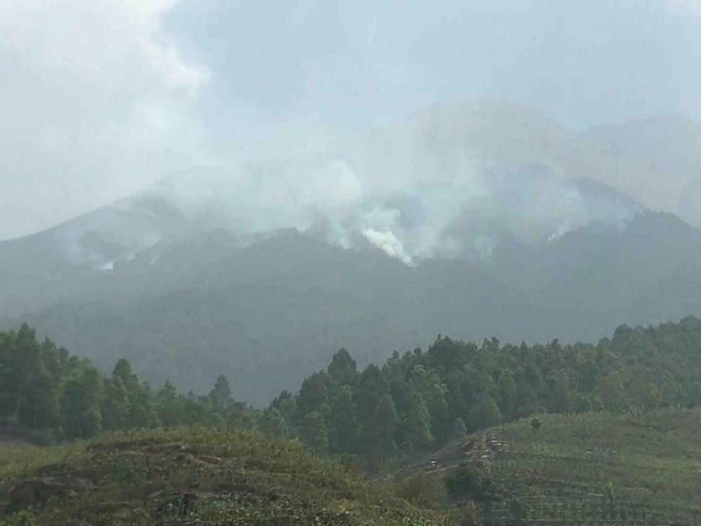 Ada Kebakaran, Semua Jalur Pendakian Gunung Sumbing Ditutup