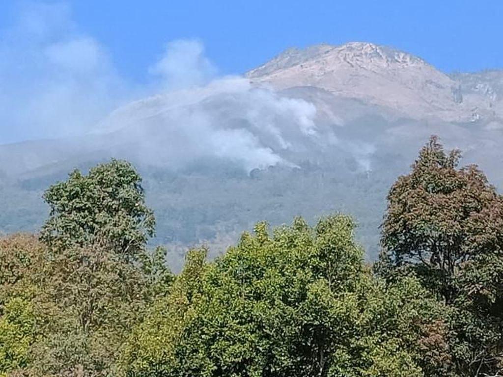 Kebakaran Melanda Lereng Gunung Sumbing
