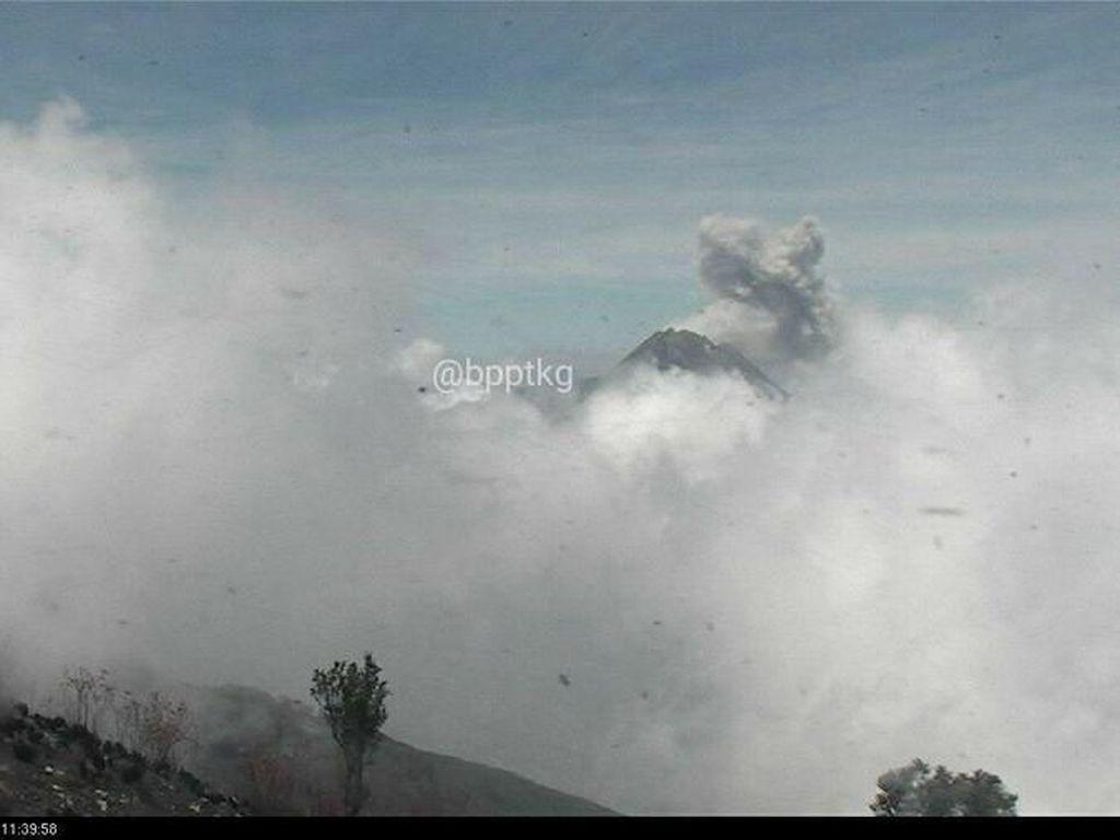 Gunung Merapi Embuskan Awan Panas Letusan Setinggi 800 M