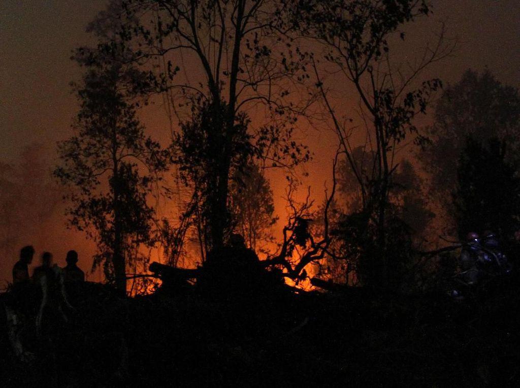 Antisipasi Karhutla, BMKG Imbau Hujan Buatan Dilakukan Saat Peralihan Musim