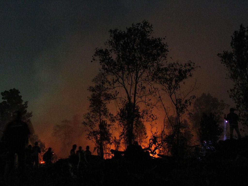 Karhutla Bikin Risau Berujung Pencopotan Kapolda Riau