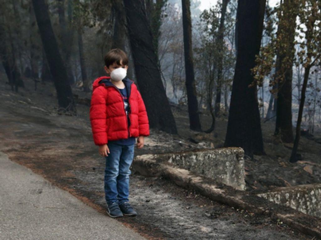 5 Tips Atasi Bahaya Kabut Asap Agar Tetap Aktif dan Produktif