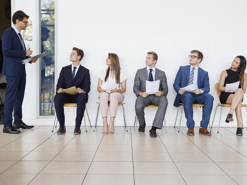 5 Langkah Sukses Mencari Pekerjaan