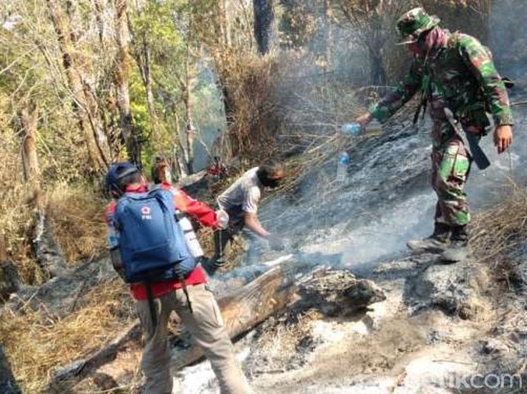 Api Belum Padam, Kebakaran di Gunung Sumbing Capai 24 Hektare