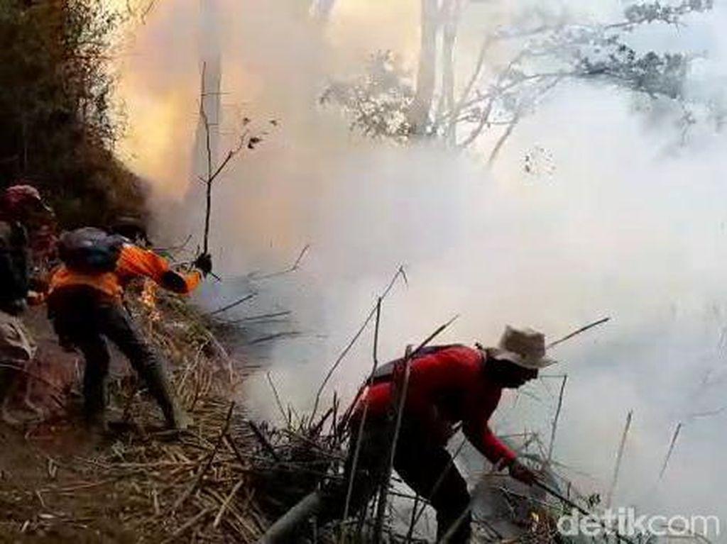 Ridwan Kamil Sebut Perusak Hutan Lebih Takut Hukum Adat Daripada Formal
