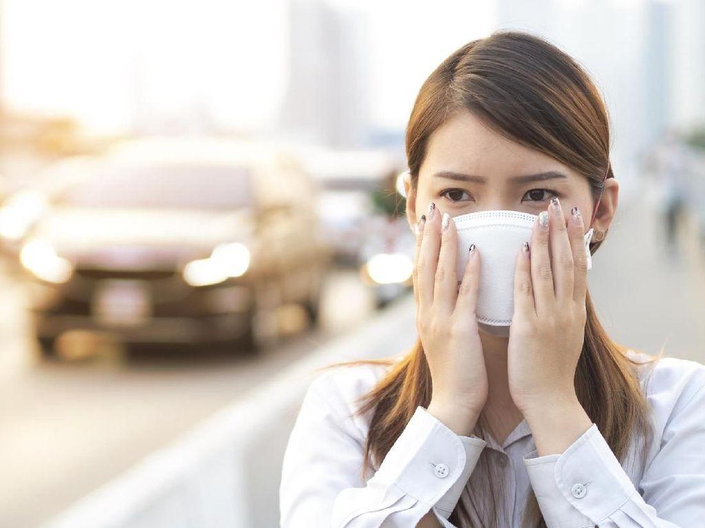 Benarkah Paparan Polusi Udara Bisa Sebabkan Kolesterol Tinggi?