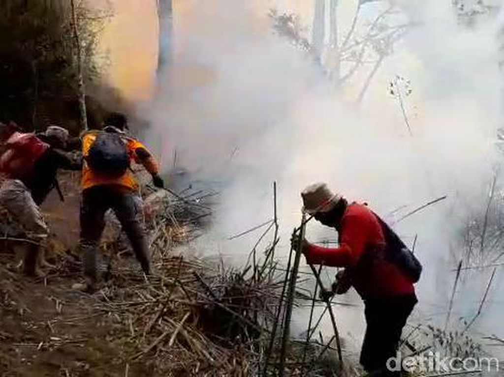 Gunung Merbabu Masih Membara, 600 Ha Lahan Hangus Terbakar