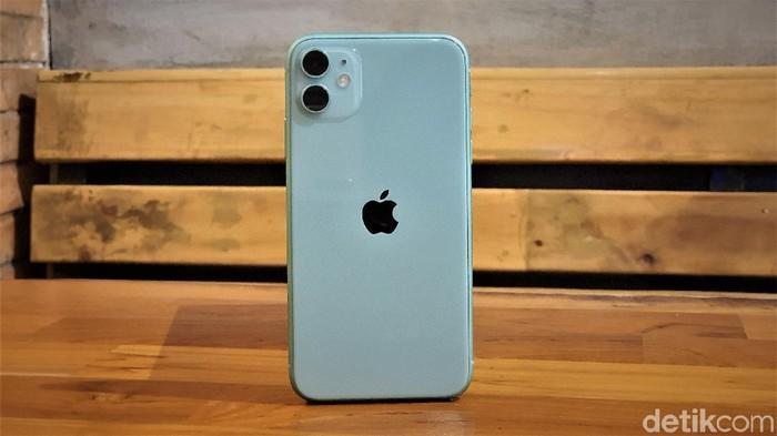 iPhone 11. Foto: Adi Fida Rahman/detikINET