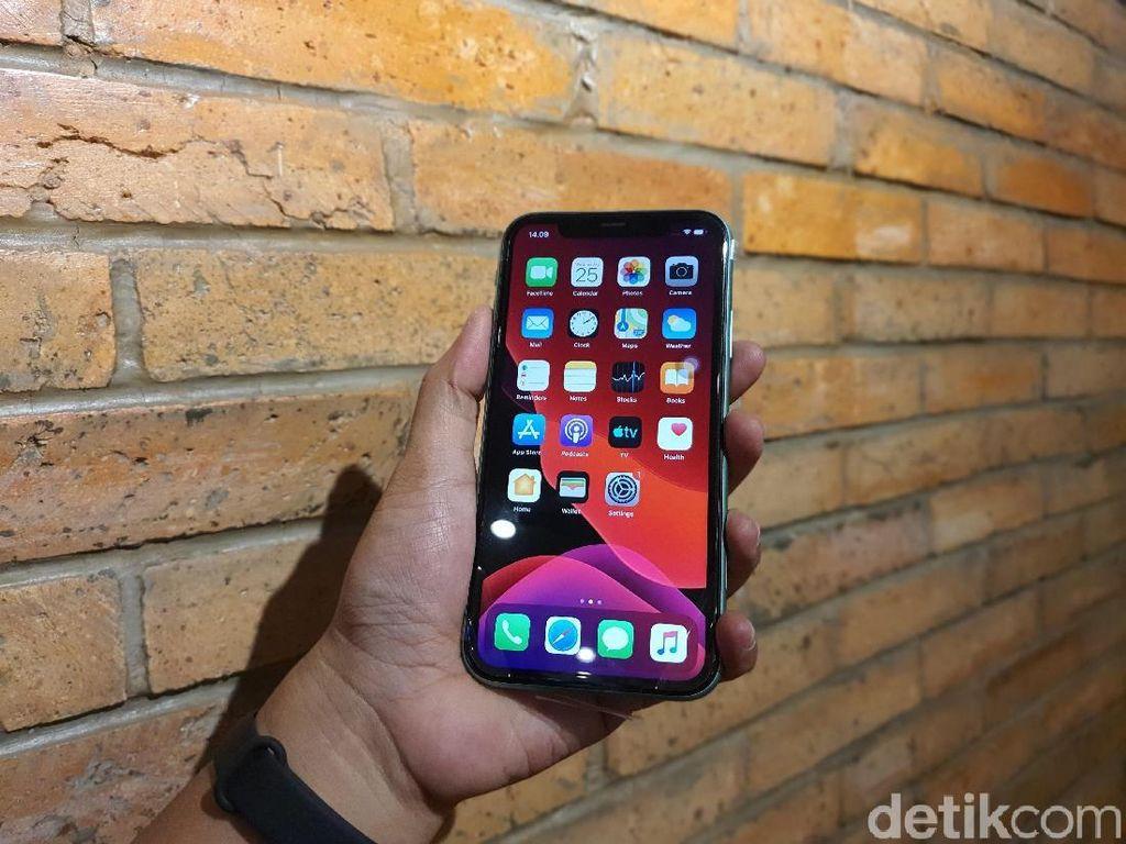 Apple Ganti Gratis Layar iPhone 11 Bermasalah, Ini Caranya!