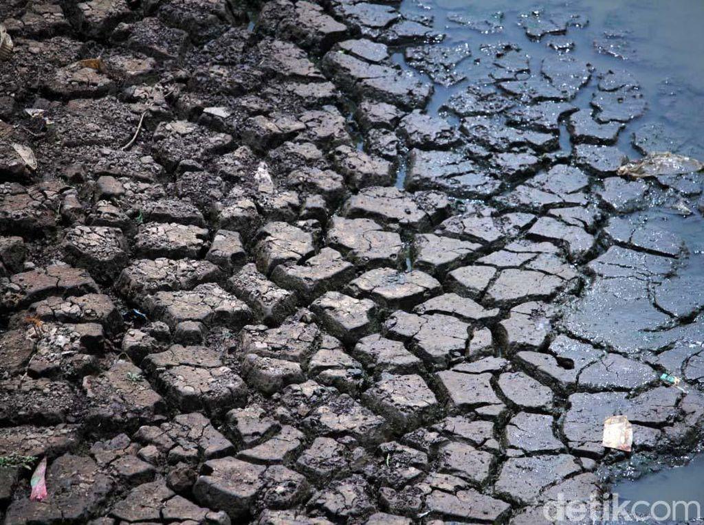 Kasihan! Sungai Citarik Mengering, Petani Gagal Panen