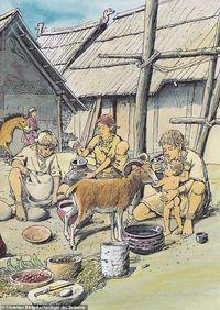 Wow! Botol Susu Kuno Berusia 2500 Tahun Ditemukan di Jerman