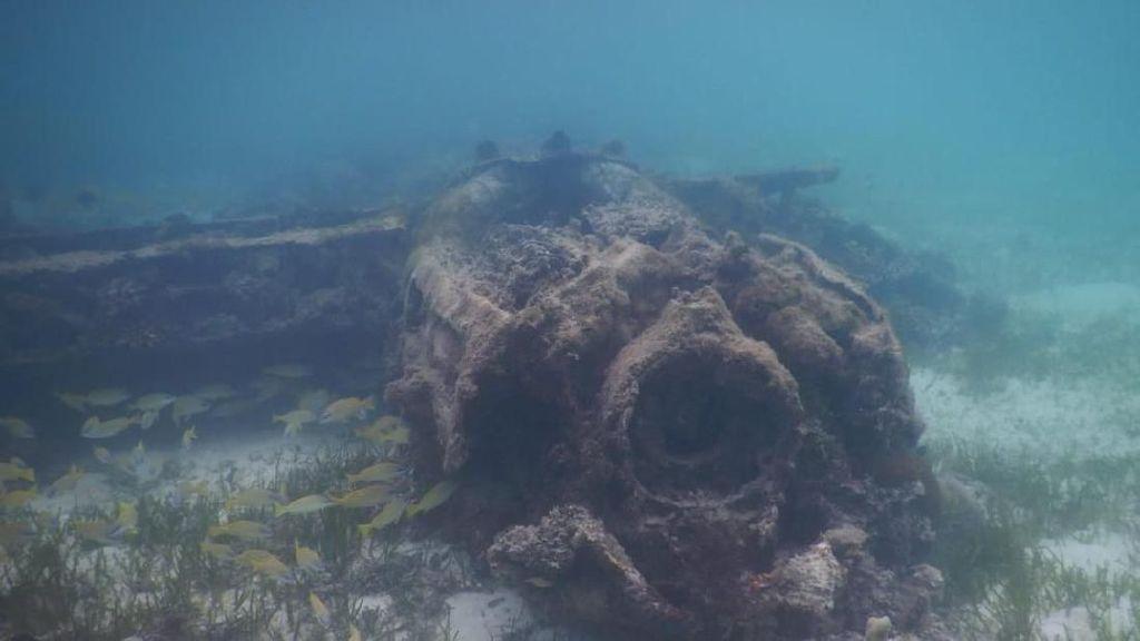 Foto: Bangkai Pesawat Pasukan Kamikaze Jepang di Papua
