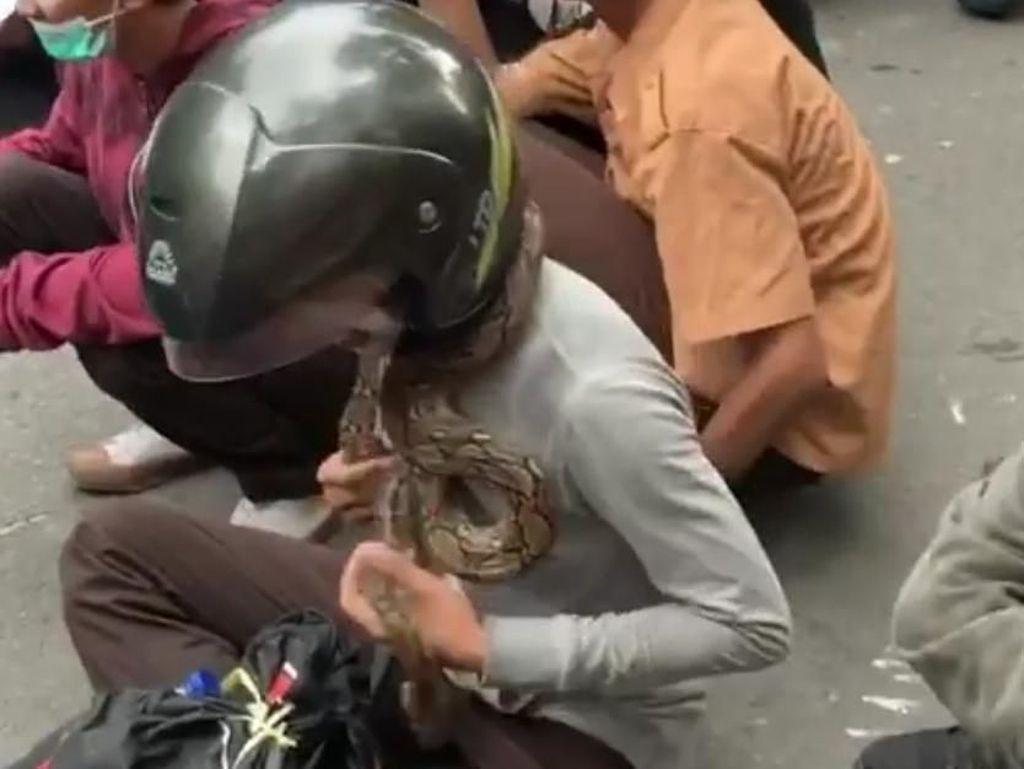 Saat Ular Diajak Pelajar Ikut Demo di Medan