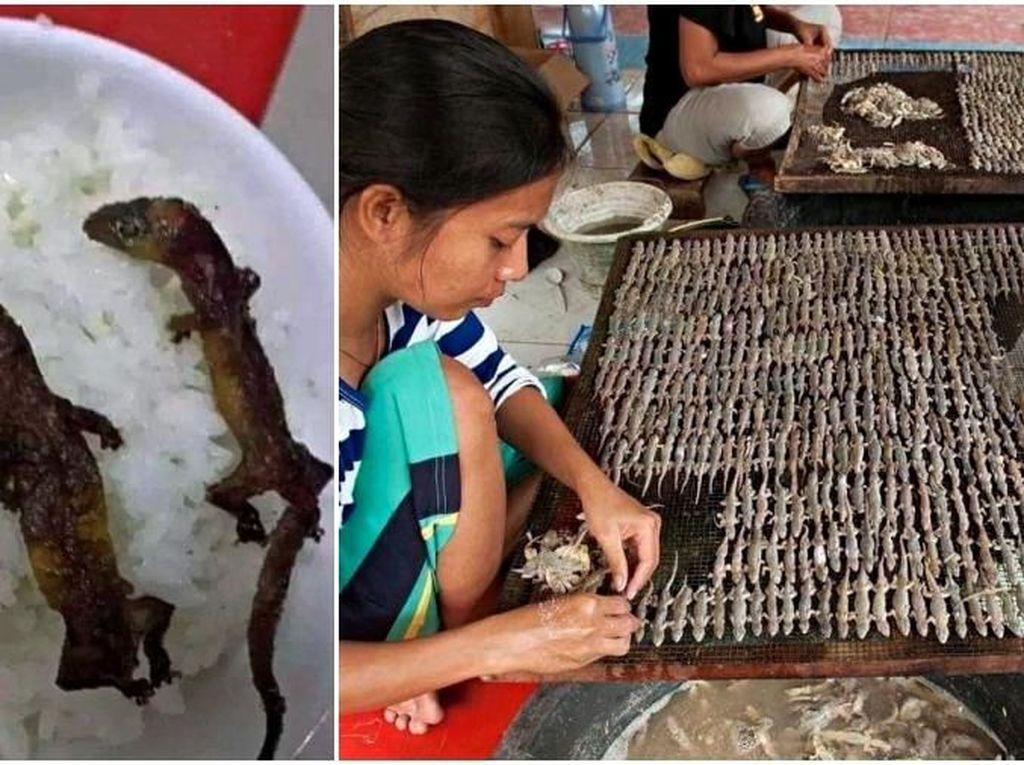 Beda Banget! Rice Bowl Kekinian di Vietnam Ini Pakai Cicak Panggang