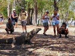 Pulau Komodo dan Pulau Rinca Terapkan Membership untuk Turis
