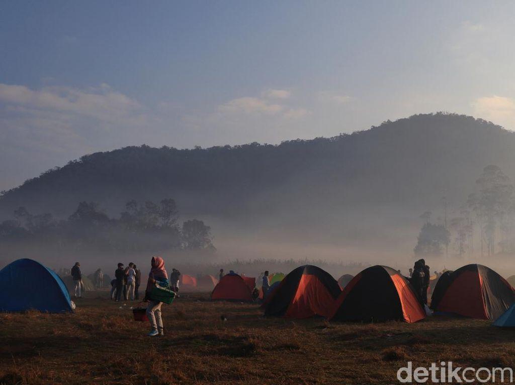 Mengenal Ranca Upas, Tempat Kemping Paling Asyik di Bandung
