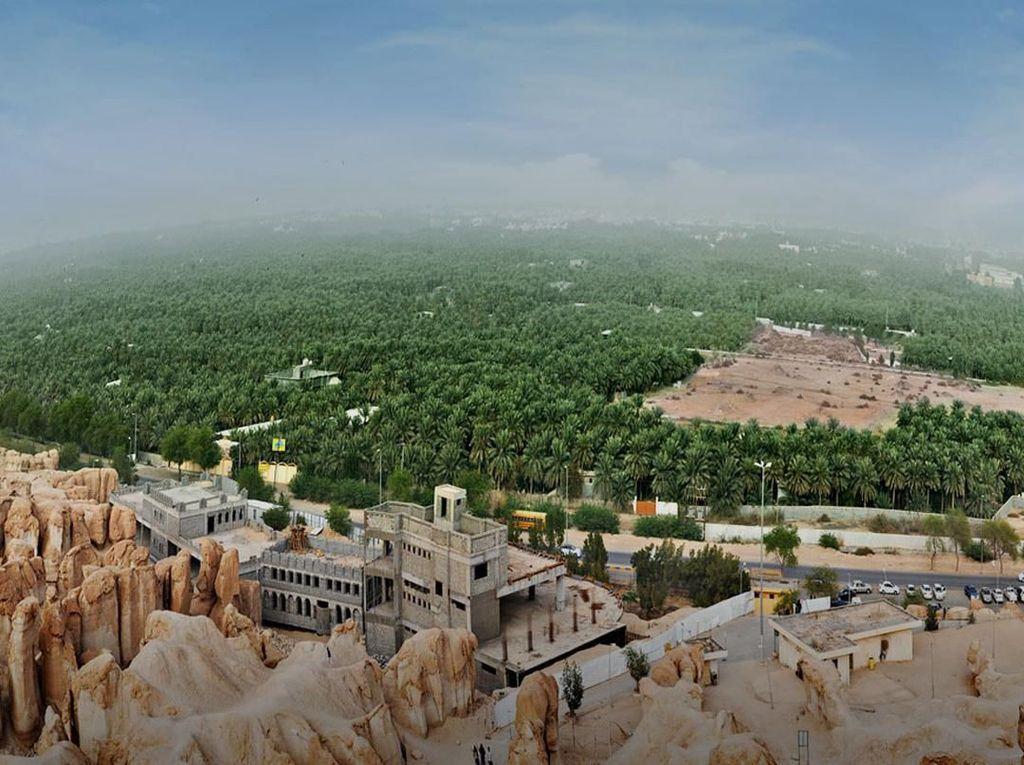 Musim Dingin, Saudi Tawarkan 300 Paket Wisata Safari untuk Turis