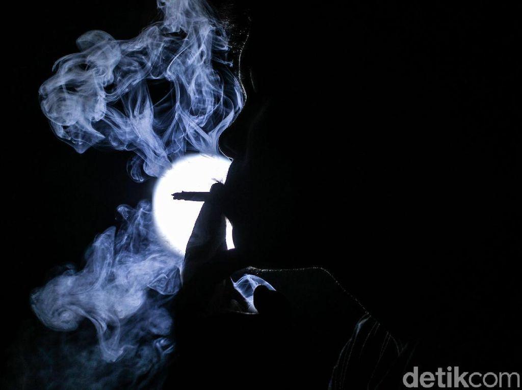 Harga Rokok Naik, Petani Tembakau Cemas Panen Tak Terserap