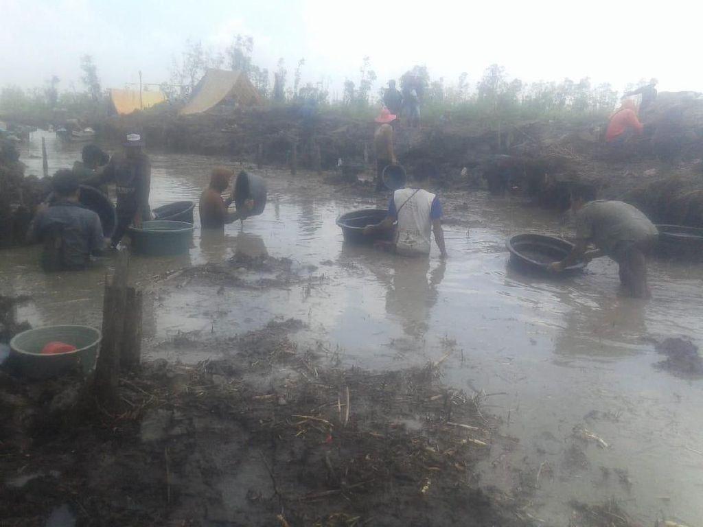 Berburu Harta Karun Kerajaan Sriwijaya, Warga Sampai Dirikan Tenda