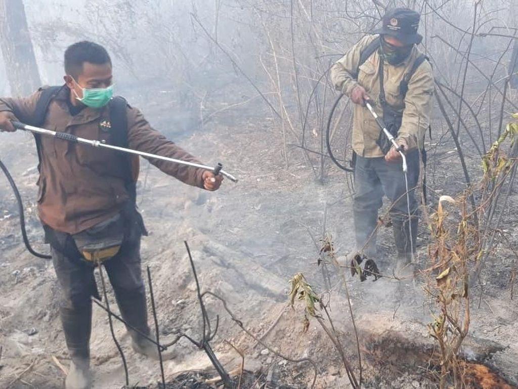Kebakaran Hutan di Gunung Merapi Berhasil Dipadamkan