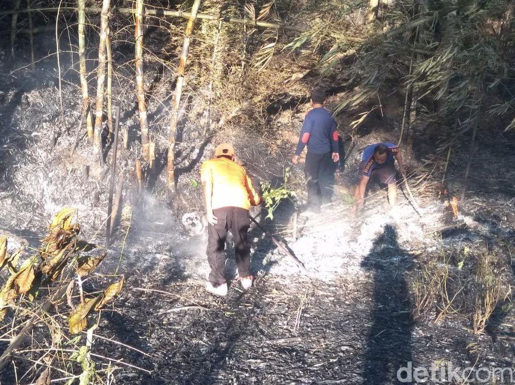 Kisah Tim SAR Selamatkan 13 Pendaki yang Terjebak di Kebakaran Gunung Raung