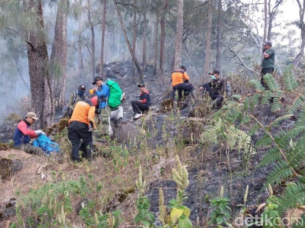 21,5 Hektar Hutan Konservasi di Gunung Arjuno Ludes Terbakar