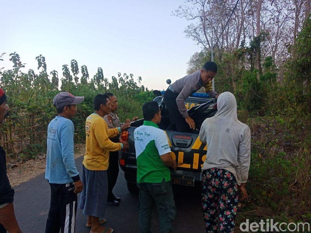 Nelayan Banyuwangi Tewas Terinjak Kawanan Banteng di TN Alaspurwo