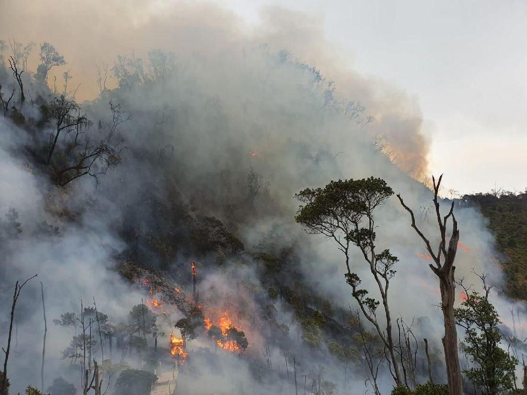 Api Masih Berkobar, Obyek Wisata Kawah Putih Ditutup Sementara
