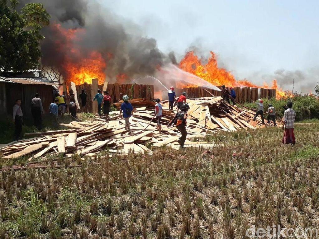 Ribuan Lembar Kayu Jati yang Dijemur Terbakar, 3 Damkar Dikerahkan