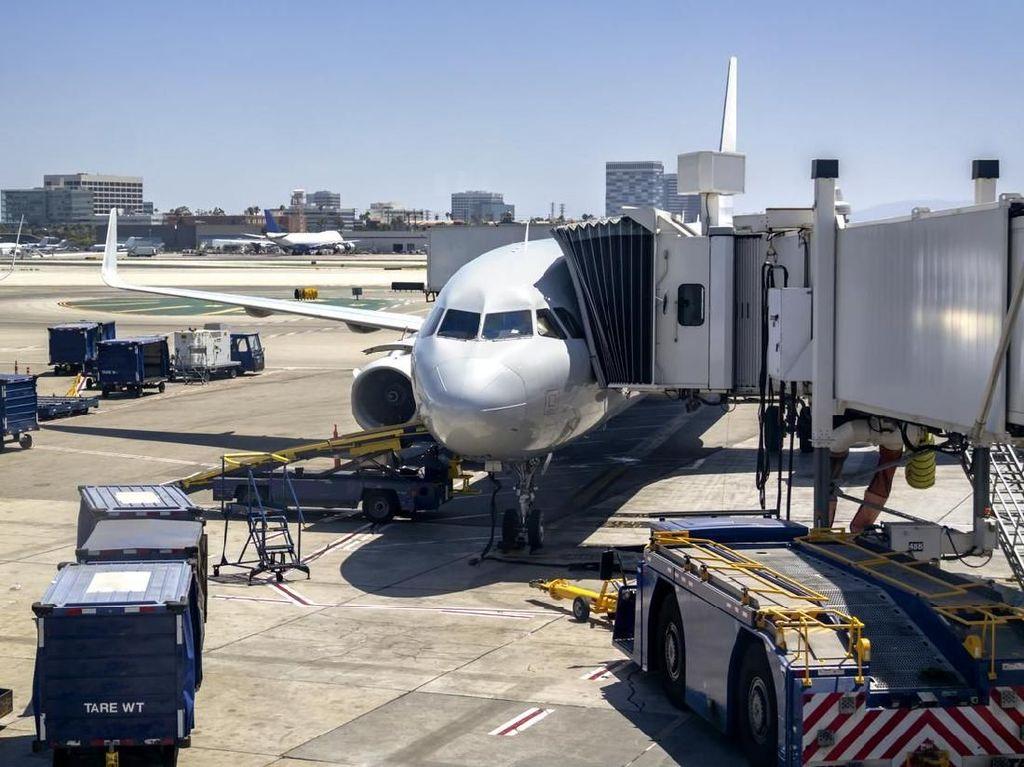 Putus lalu Ribut di Pintu Pesawat, Dua Karyawan Maskapai Dipecat