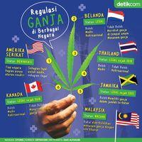 Bagaimana dengan nasib ganja di Indonesia?