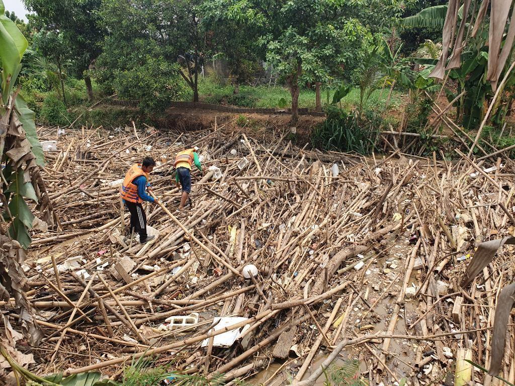 Dinas LH: Sampah Bambu di Sungai Cikeas Bekasi Diangkut Selasa
