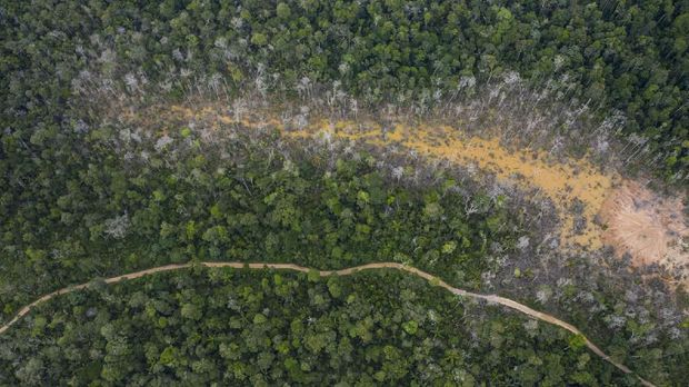 This April 3, 2019 photo shows the destruction of the jungle caused by illegal miners in Peru's Tambopata province. Earlier in the year, Peru's government launched