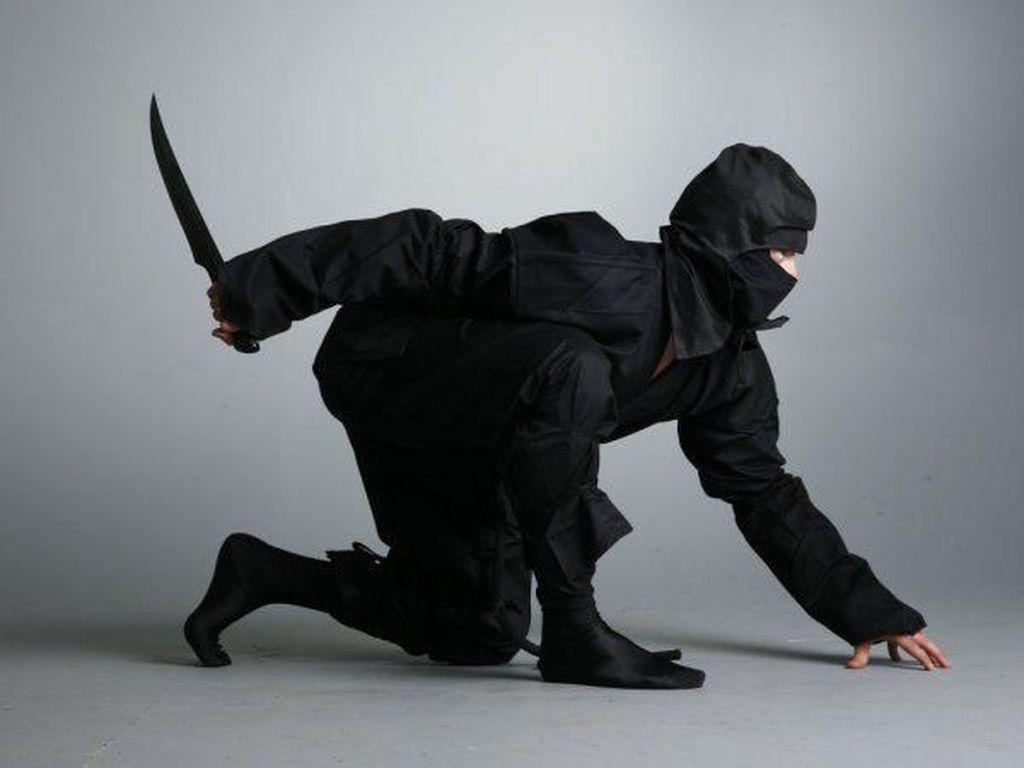 Markas Ninja Batal Dibongkar
