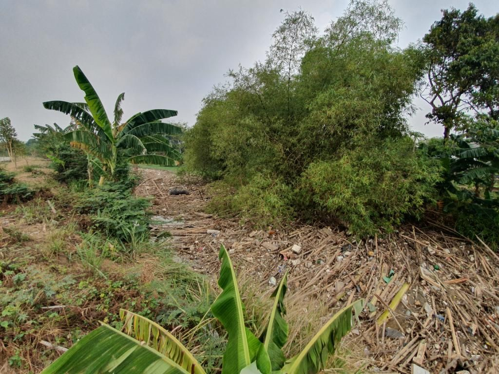 Soal Sampah di Sungai, Wali Kota Bekasi Minta Screening di Hulu