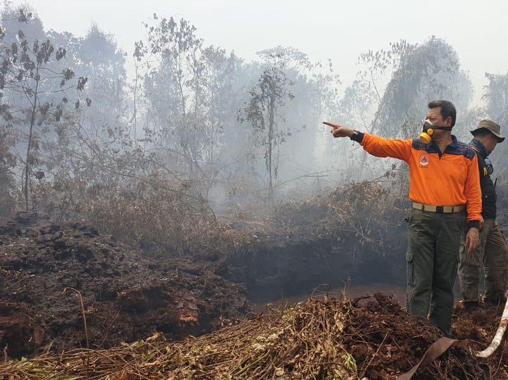 504 Titik Panas Muncul di Sumatera, Sumsel Terbanyak