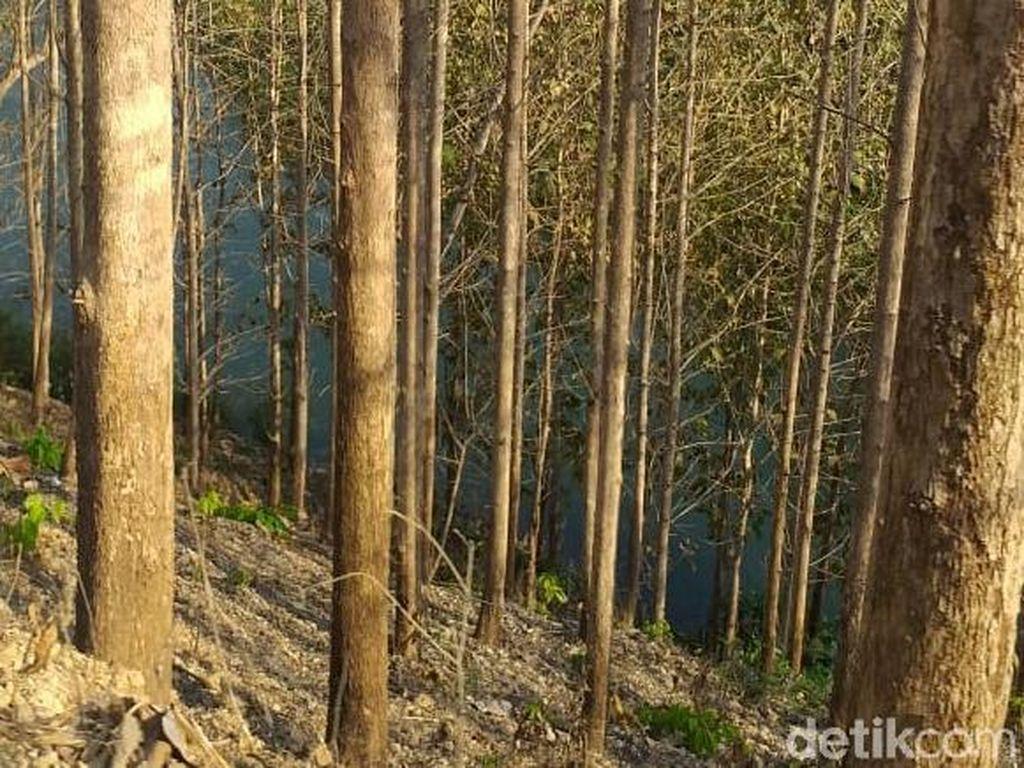 Terpeleset Saat Cari Batu, Warga Malang Hilang di Sungai Brantas Blitar