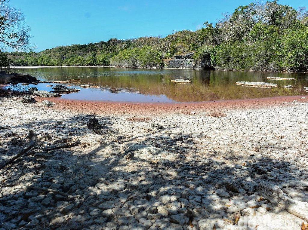 Pesona Danau Merah, Keajaiban dari Selatan Indonesia