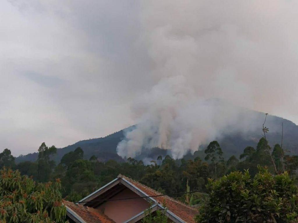 Jalur Pendakian Gunung Cikuray Garut Terbakar