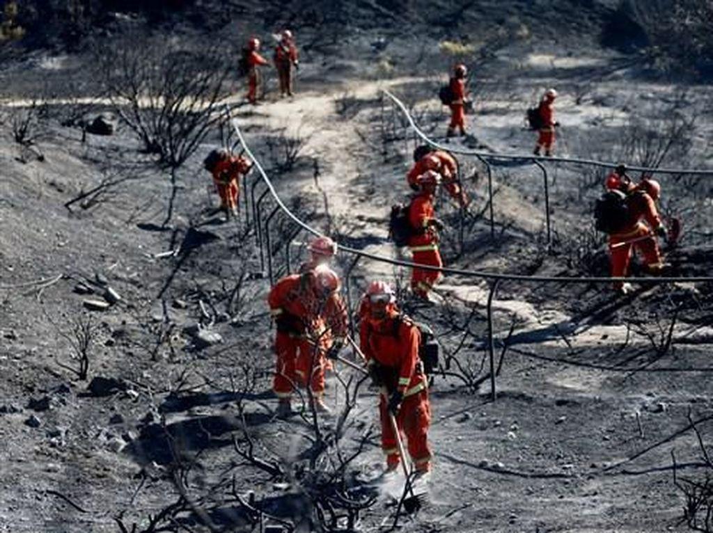 Keadaan Darurat di California, Kebakaran Hutan Picu Evakuasi 180 Ribu Orang